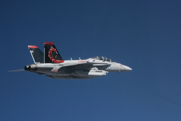 EA-18G_VAQ-132_CAG_Bird_in_flight_2009.jpg